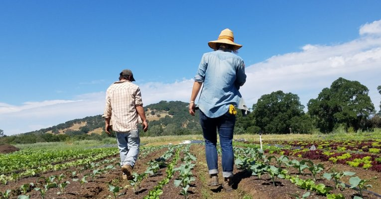 FogDog Farm establishes secure land tenure